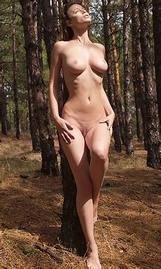 Nassa In The Forest